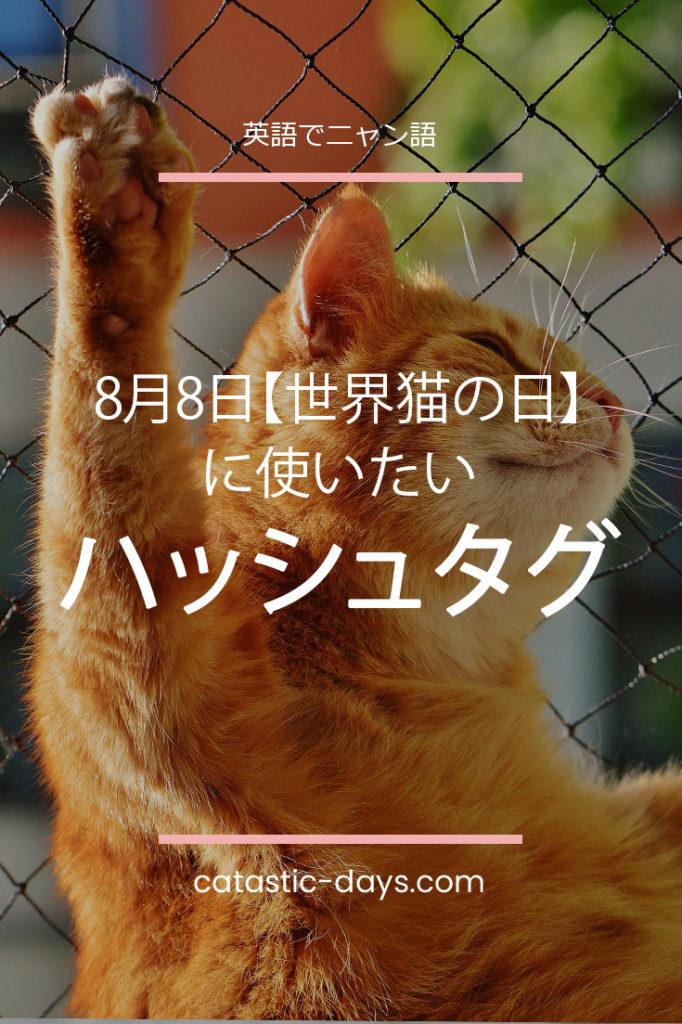世界猫の日に使いたいハッシュタグ