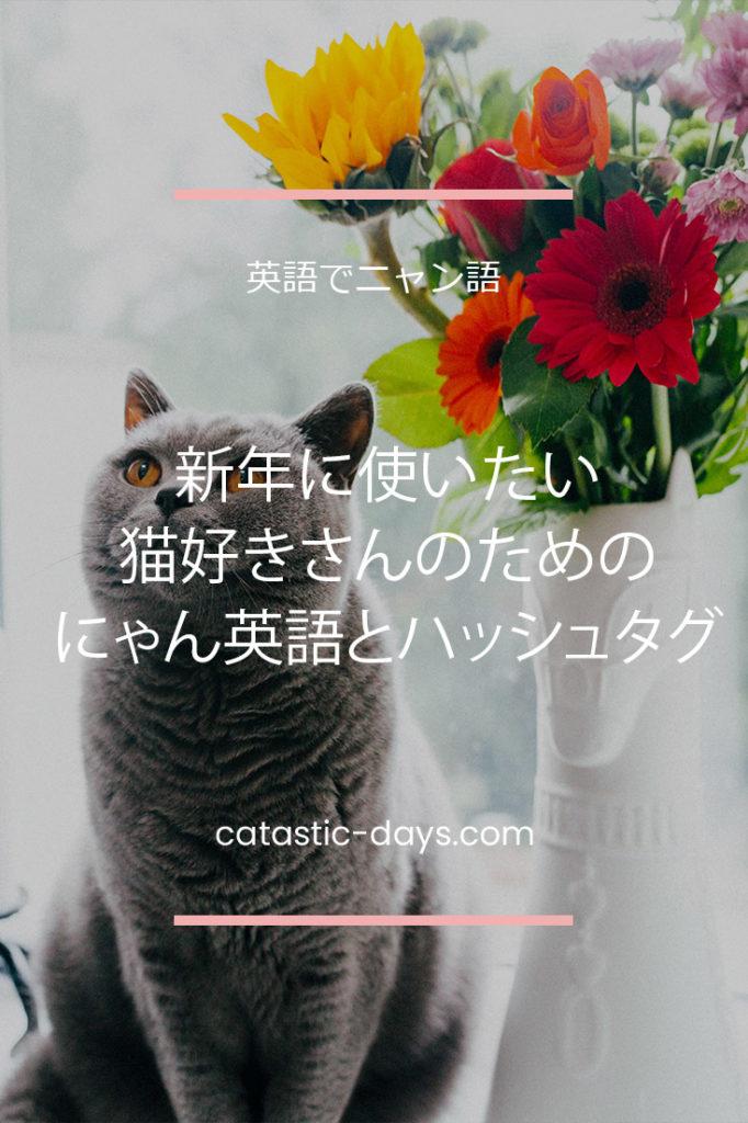 新年に使いたい猫好きさんのためのにゃん英語とハッシュタグ